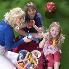 family-picnic-studio-set