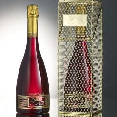 bottle-of-champagne-in-presentation-case